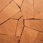 Shattered Douglas fir with Clear Varnish