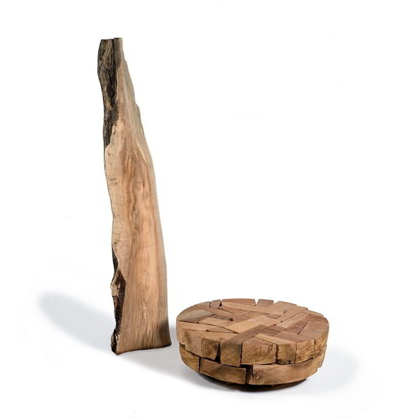 Fred and cedar log jam.