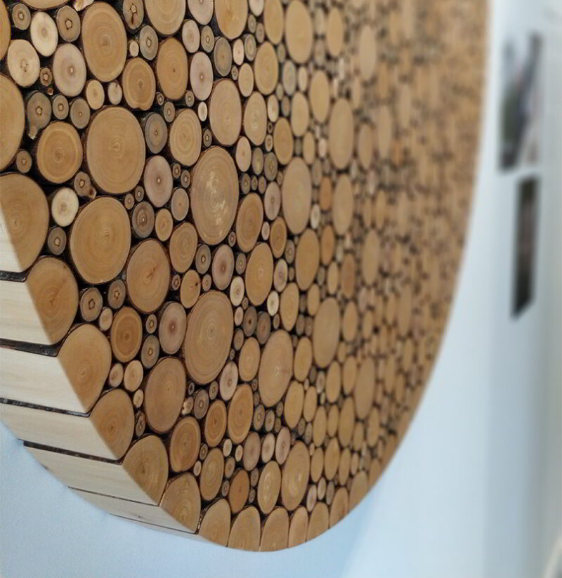 Cropped photo of the Alder disc against a white wall.