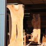 Sentinels pictured at the shop.