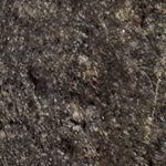 Granite with Clear Sealer