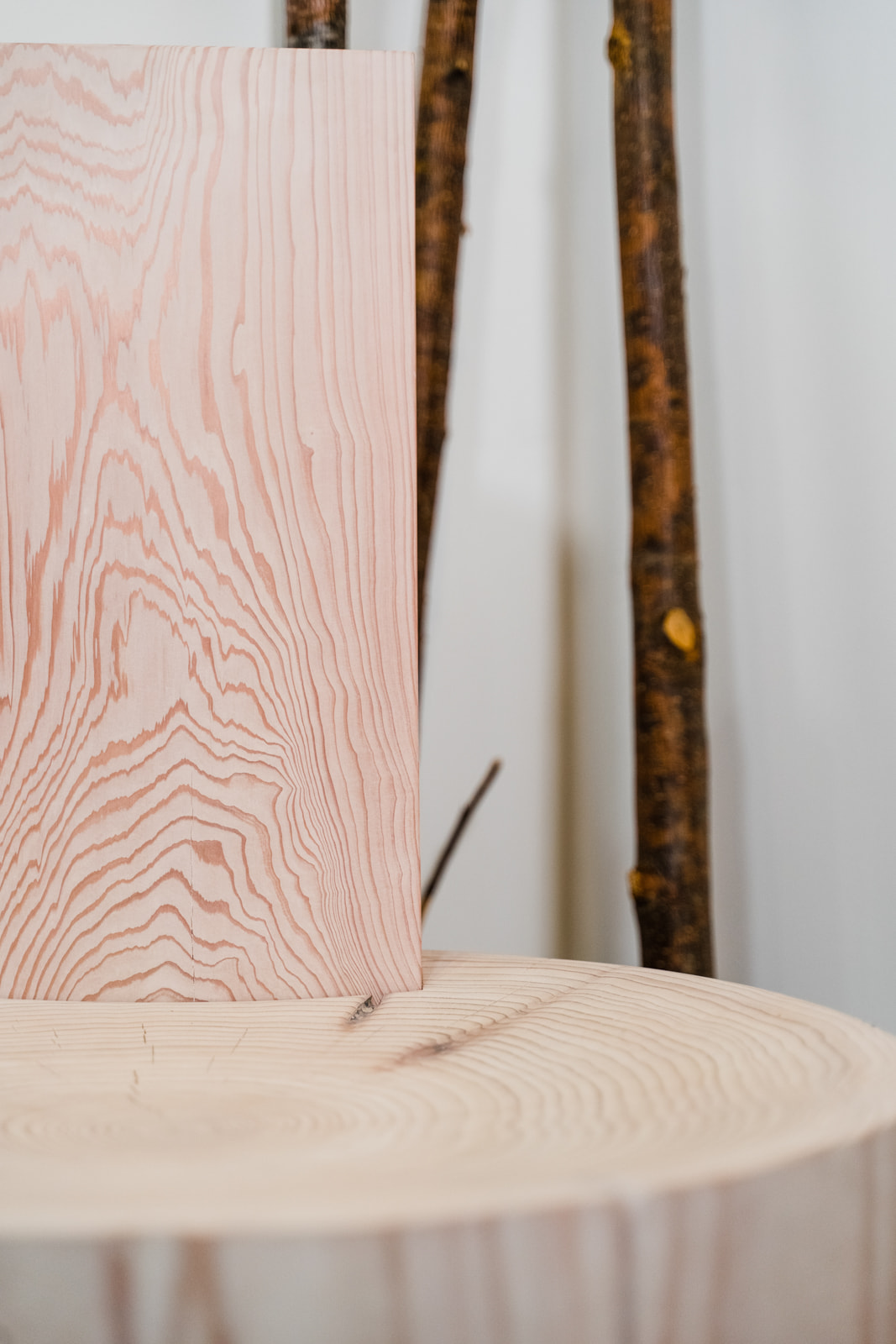 Photo displays the grain of the Mysa chair. There are decorative branches in the background.